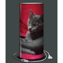lampe chat calin