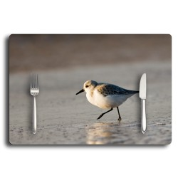 set de table collection oiseaux