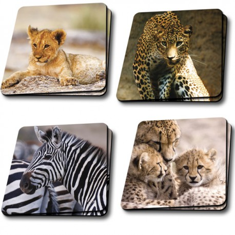 Sous verre collection Animaux sauvages