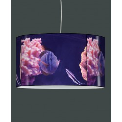 Suspension collection Faune marine