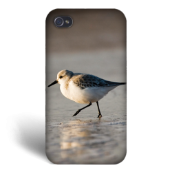 coque smartphone collection oiseaux