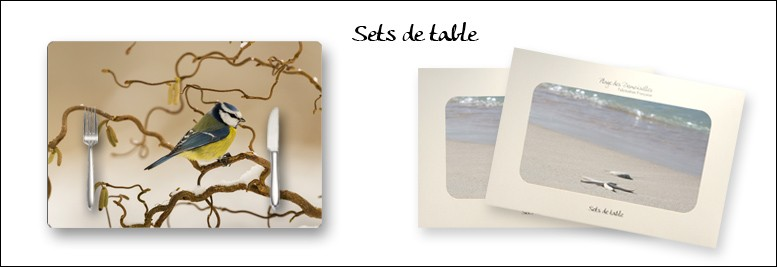 nos collections de sets de table